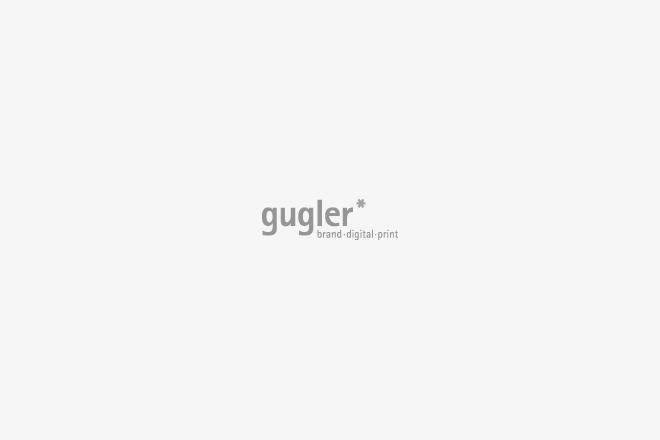 Logo of gugler*