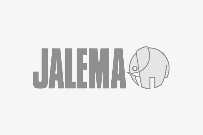 Logo of Jalema B.V.