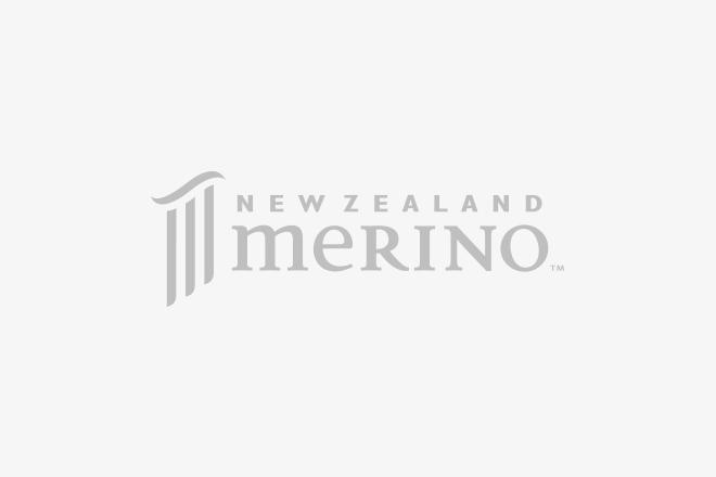 Logo of The New Zealand Merino Company Limited