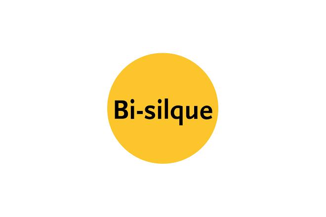 Logo of Bi-Silque S.A.