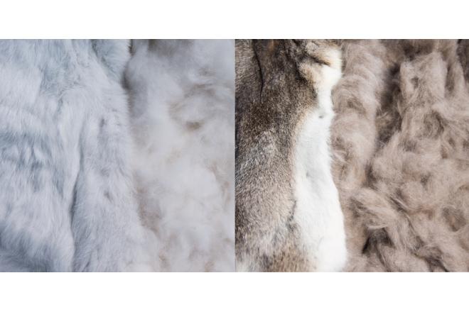Cortadoria® Rabbit Hatters Fur