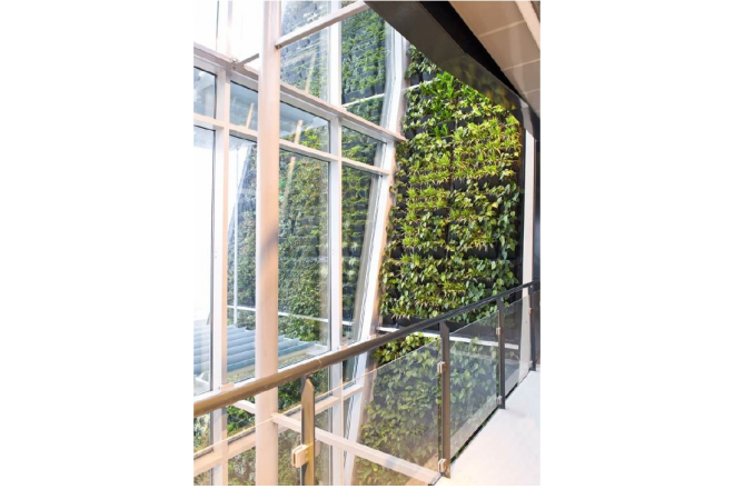 Vertical garden The Modulogreen® now at C2C-Centre!