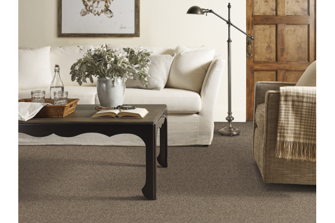 Residential Nylon-6,6 Carpet