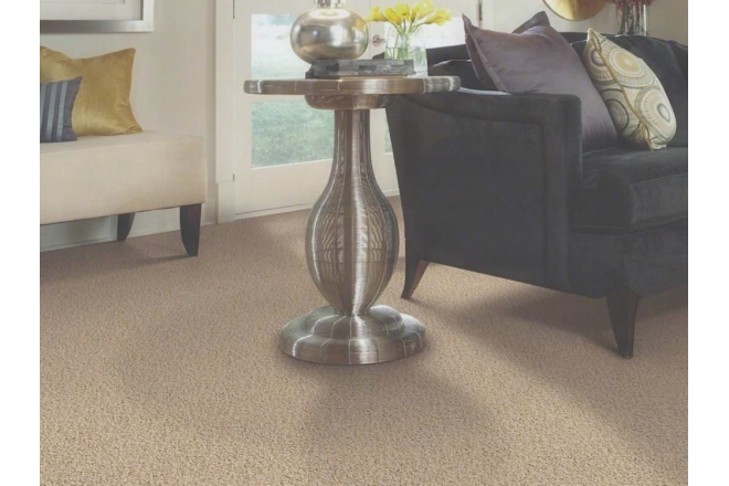 Residential Polyester Broadloom Carpet