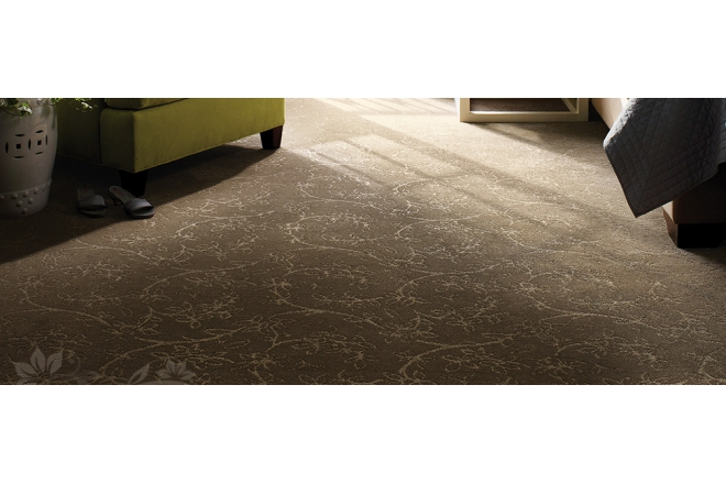 Anso and Unbranded Type 6 Nylon Residential Carpet