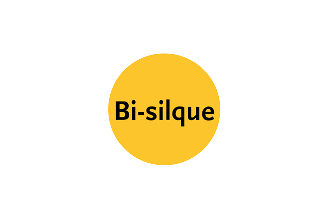 Bi-Silque S.A.