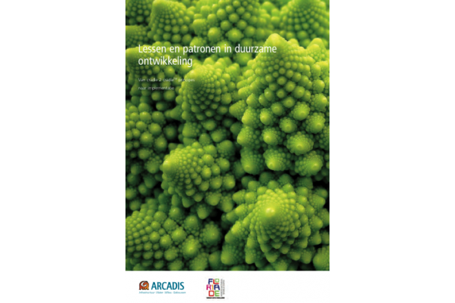 Lessen en patronen in duurzame ontwikkeling
